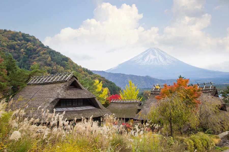 Fuji Mountain from Saiko Iyashi no Sato Nenba, Japan - places to view mount Fuji
