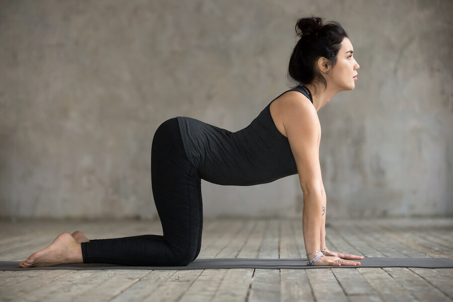 Cow Pose Young Woman - yoga poses for plus-sized women