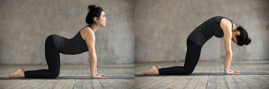 cow and cat pose - Yoga for Older Women