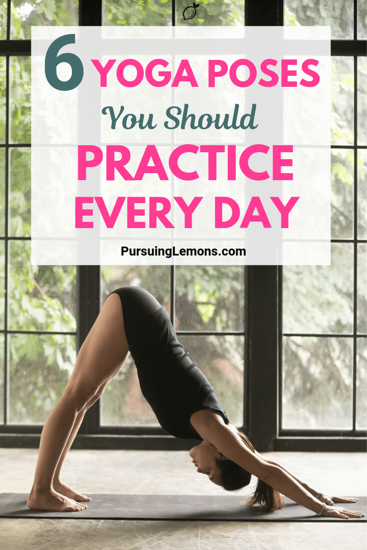6 Yoga Poses You Should Practice Every Day | To improve your yoga skills, you can do certain poses on a daily basis. Here are the 6 yoga poses to level up your yoga skills.