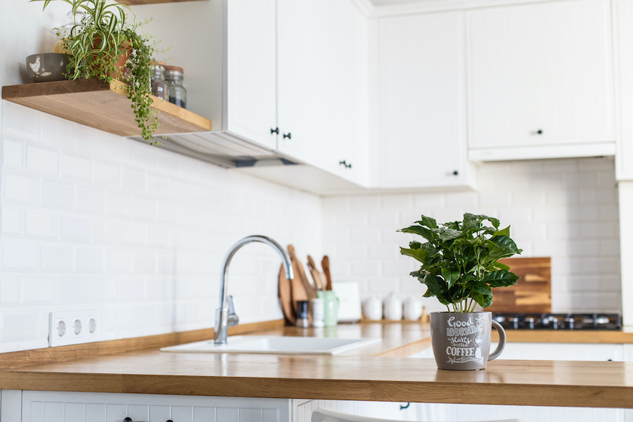Wipe and Clear Counters Every Day - habits of people with organized homes